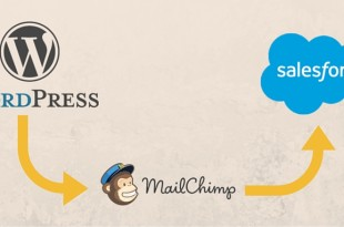 Wordpress to Salesforce